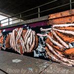 Frankfurt_Graffiti_5Stars_2015-2016_vol1-45